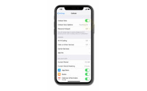 fix iphone xs no service