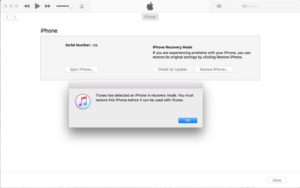 how to restore iPhone X in iTunes