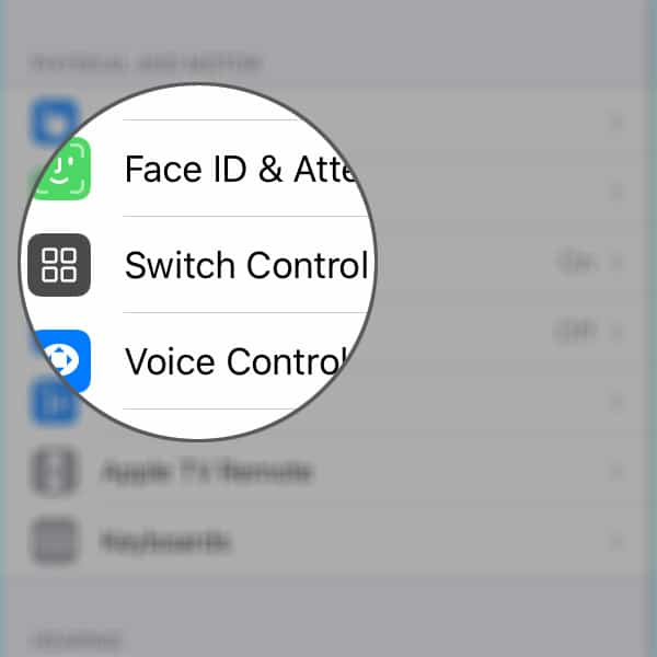 blue box on iphone xr switch control