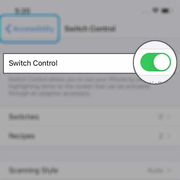 blue box on iphone xr switch control disable