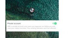iphone tiktok private account