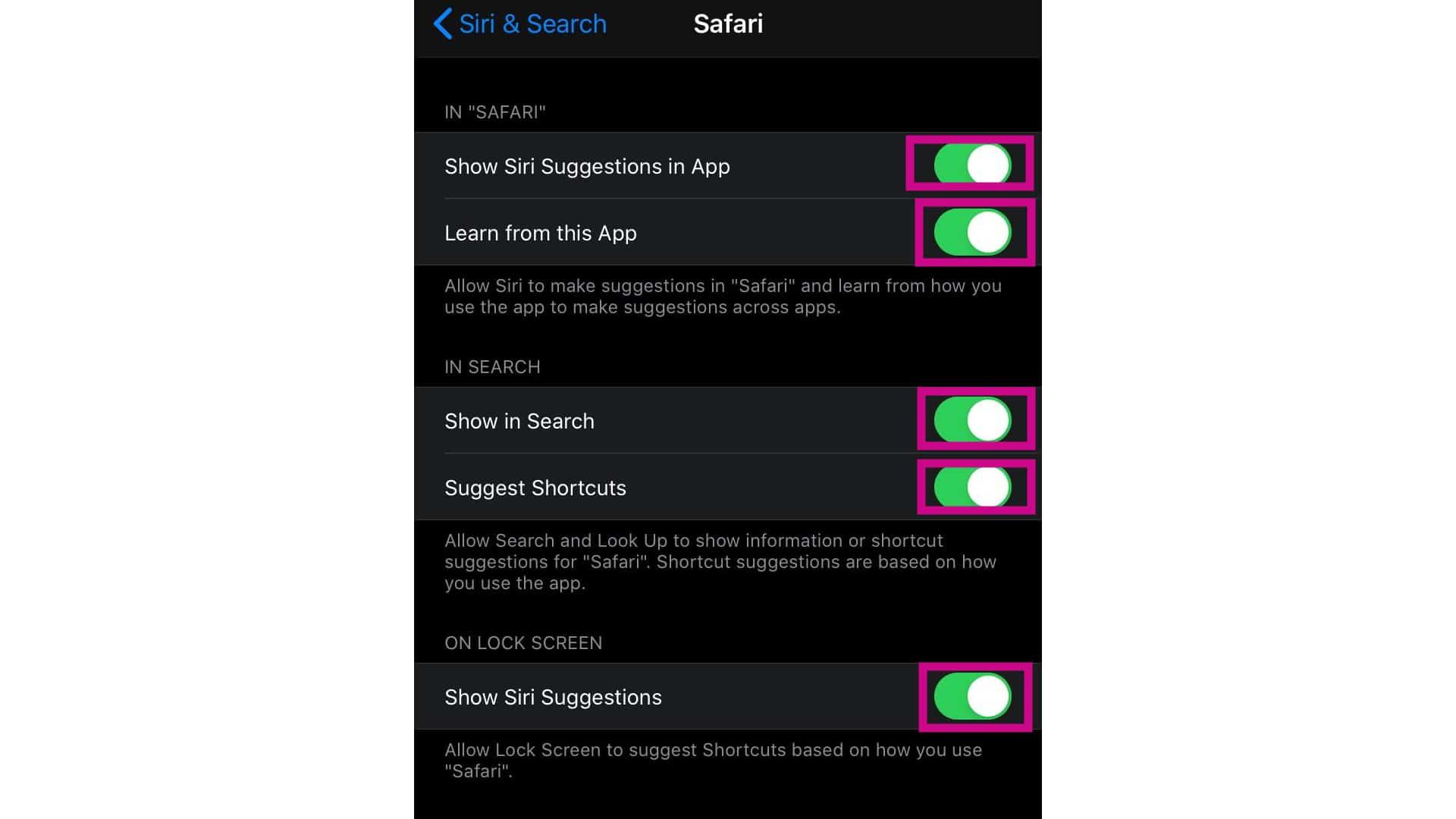 enable safari voice control