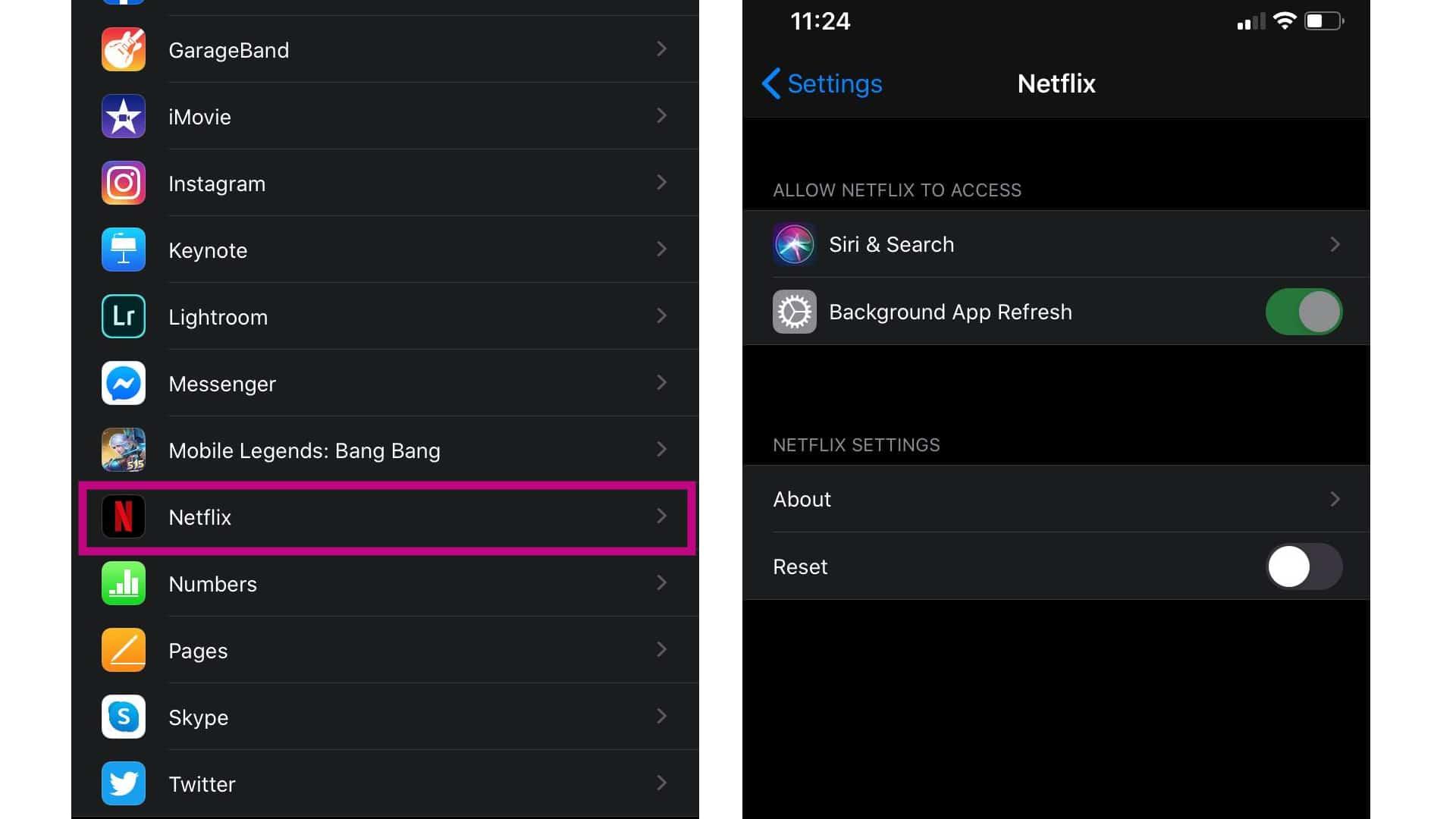 netflix app options
